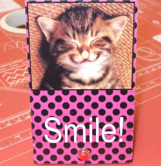 toothbrush_timer_meole_brace_year_7_smile_cat